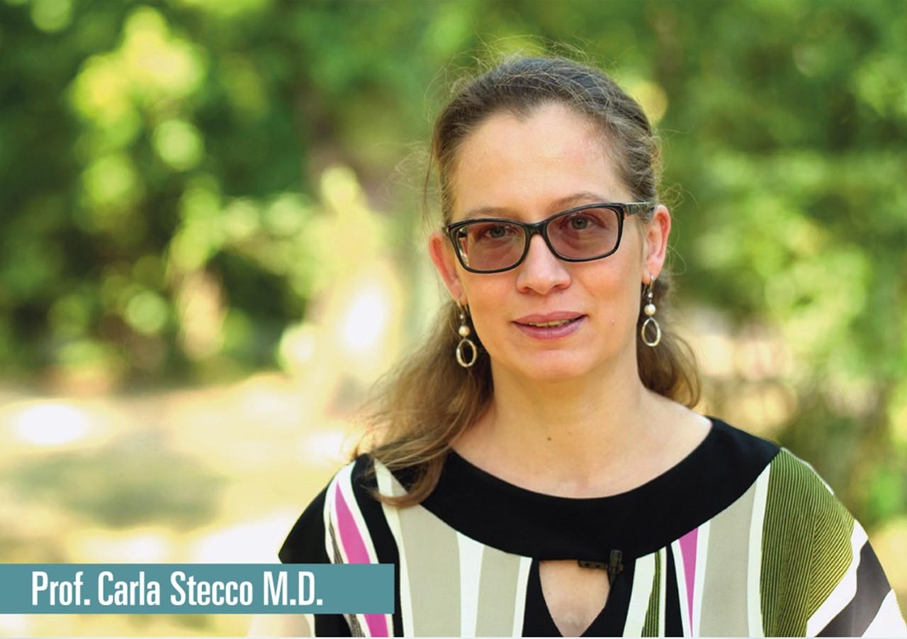 Let's talk about fascia - geplanter Film mit Prof. Carla Stecco