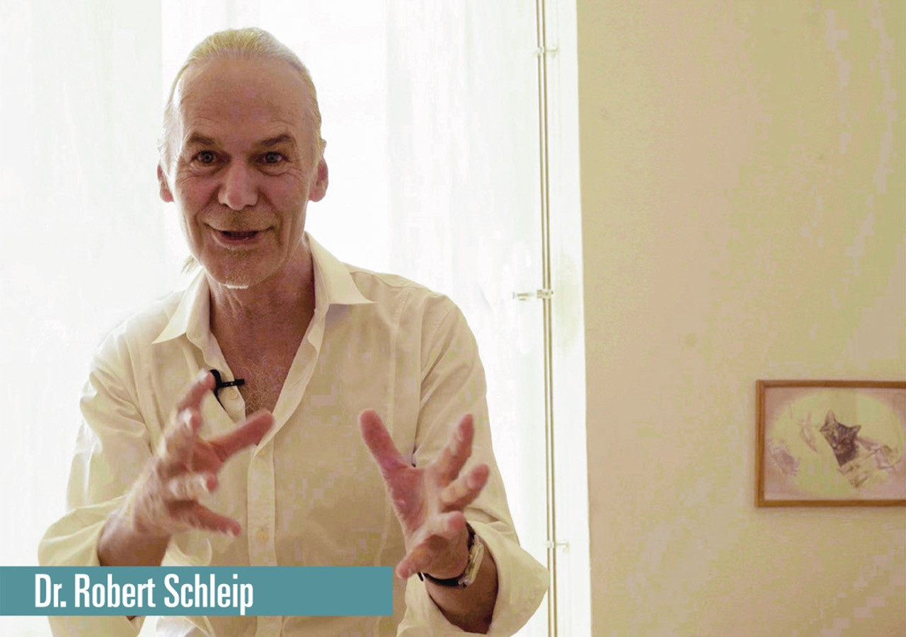 Let's talk about fascia - Robert Schleip